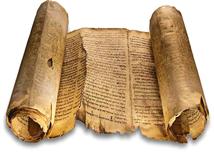 pergamena